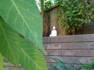 Buddha_garden-330