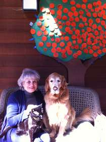 My pets (Mitzie the Cat and Zoe the Golden Retriever) and I at my front door, with orange tree from the students of Redwood Heights School